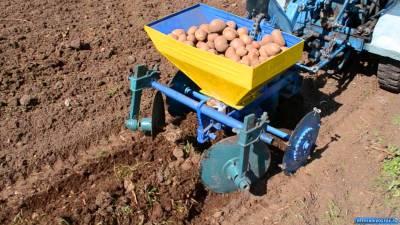 Как научиться выращивать картошку