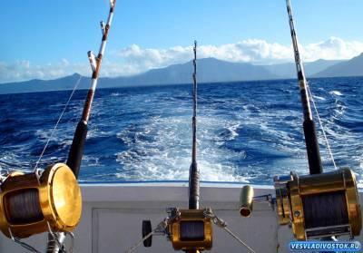 Ловля хищных и мирных рыб на спиннинг