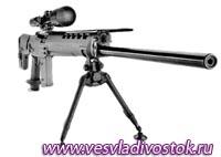 Штурмовая винтовка «SIG» SG 550/551