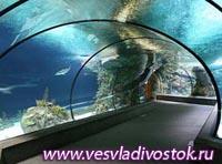 Юбилей океанариума в Хельсинки