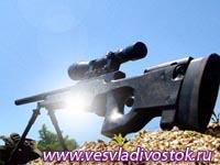 Снайперская винтовка L96A1 (РМ, AW)