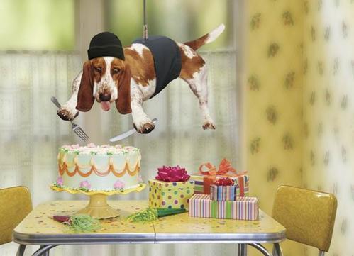 Поздравляем с Днем рождения