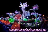 Цветение электрических цветов в Бангкоке