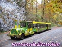 В Москве появятся экскурсионные автопоезда в парках