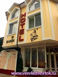 Гостиница Olsi (3 звезды)