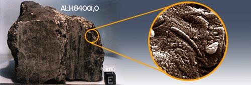 В Марсианском метеорите снова нашли жизнь
