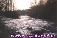 Река Сережа Тверской области
