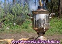 Музей чая появился в Сочи