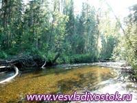 Река Скнига (Средний и Нижний участок)