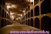 Подземные подвалы Милештий Мичь