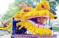 Фестиваль цветов пройдет в начале 2012 года во Вьетнаме