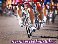 Фестиваль велосипедистов в Вене