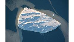 Глобальное потепление может высвободить изо льдов Антарктиды яд