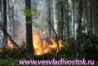 Два лесных пожара действуют в Хакасии, четыре — локализованы