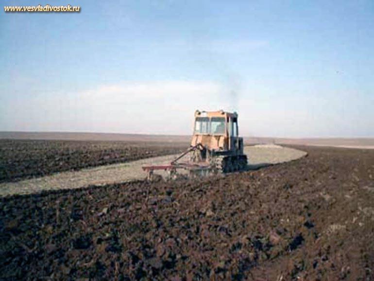 В Томской области губернатор Виктор Кресс дал старт посевной кампании.
