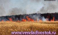 Около Саралы больше 20 часов идет борьба с лесным пожаром