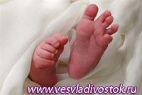 На Донетчине родились сиамские близнецы, у которых на двоих одна печень и срослись сердца