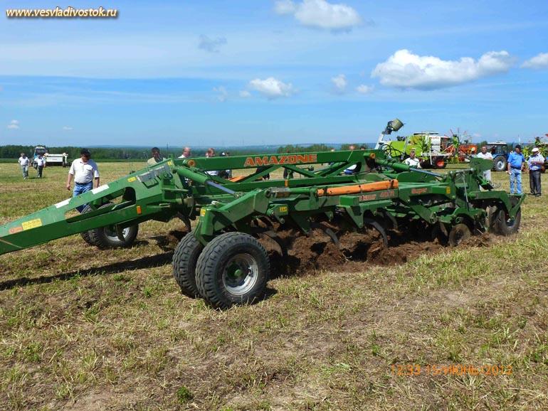 Сельскохозяйственные предприятия Кстовского района в своей деятельности к 2010 году будут использовать только семена элитных сортов.